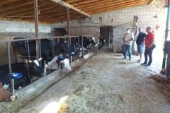 Посета-на-фармери-увозници-на-стелни-јуници-6