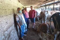 Посета-на-фармери-увозници-на-стелни-јуници-4