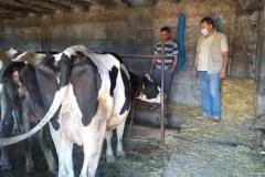 Посета-на-фармери-увозници-на-стелни-јуници-8